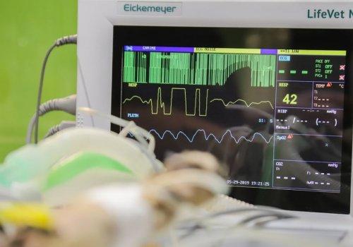 Важность проведения кардиотокографии